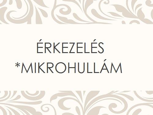 ÉRKEZELÉS MIKROHULLÁM