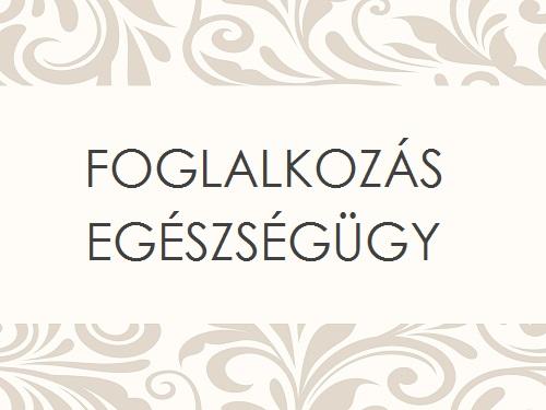 FOGLALKOZÁS EGÉSZSÉGÜGY